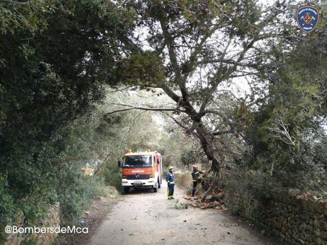 Bombers de Mallorca alertan del fuerte viento