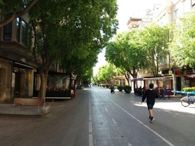 Carril bici en el barrio de Blanquerna, Palma (Foto: Archivo)