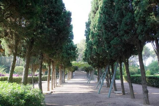 Los jardines del palacio de marivent cierran sus puertas for Jardines de marivent