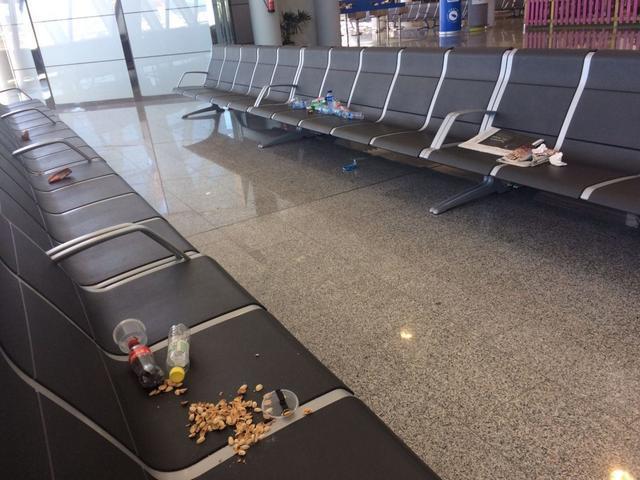 Pulgas en el aeropuerto de Palma 2