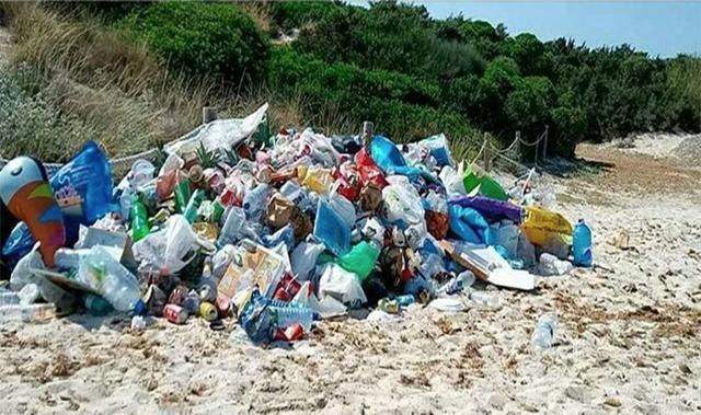 Montañas de basura en Es Trenc durante este verano que ya ha sido retirada (Foto: GOB)