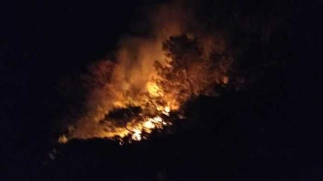 Incendio Cala Estellencs (Foto: Aina Jover)