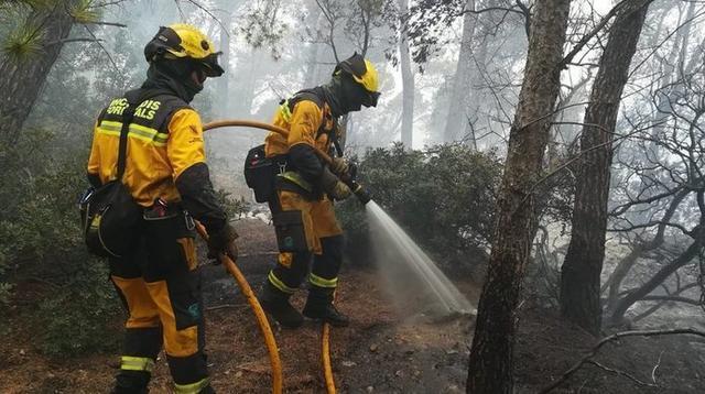 bombers-incendio-forestal-cala-estellencs (1) (1)