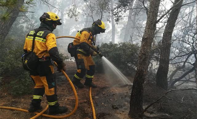 Los bomberos de Mallorca en plena acción (Foto: Ibanat)