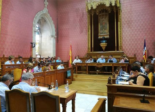 Pleno del Consell de Mallorca (Archivo)