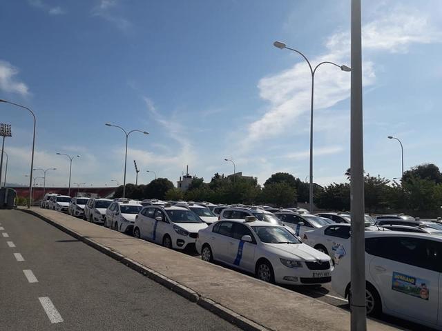 Taxistas de Mallorca 4