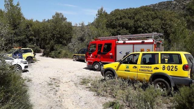 La cooperación entre los cuerpos de emergencia ha sido clave (Foto: Twitter Incendios f.Baleares)