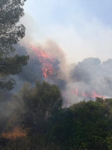 La cortina de humo ha sido perfectamente visible tanto desde la costa como tierra adentro (Foto: IBANAT)