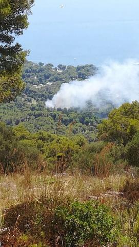 El incendio ya se había estabilizado antes de las tres de la tarde (Foto: Twitter IBANAT)