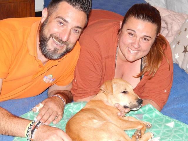 Vida rodeada de su nueva familia, que desde el principio le ha brindado todo su amor (Imagen: Peluditos de Son Reus. Facebook)