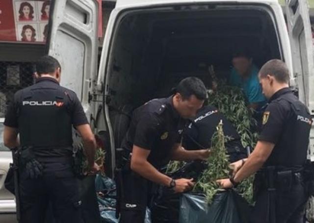 Los agentes incautando la droga (Foto: CNP)