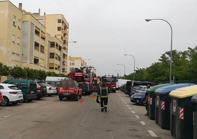 El incendio en la barriada de Son Oliva de Palma (Foto: Twitter Bombers de Palma)