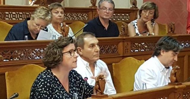La conselllera insular en la oposición Catalina Cirer en el momento de pedir explicaciones sobre la finca de Puntiró