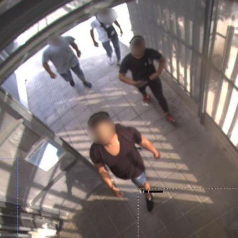 La banda de jóvenes presuntos ladrones captados por las cámaras de seguridad (Foto: Guardia Civil)