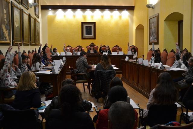 Los miembros del Consell votando durante la sesión (Foto: Ayto Manacor)