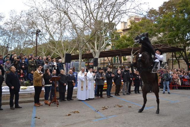 El rector de la parroquia dels Dolors, Antoni Amorós, ha bendecido a los animales (Foto: Ayto Manacor)