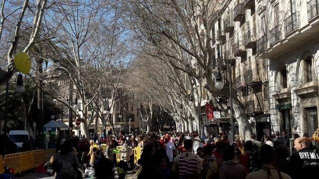 El centro de Palma ha sido ocupado por cientos de personas disfrazadas (Foto: Ayto Palma)