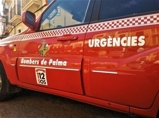 La rápida actuación de los Bombers de Palma han evitado que el fuego se propagara