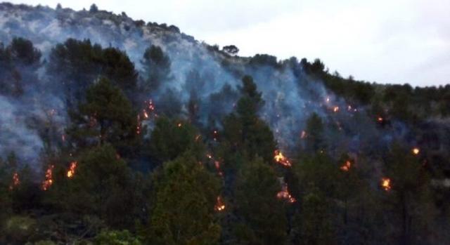Los bomberos de Mallorca trabajan en la extinción del incendio de Son Ordines (Foto: Ibanat)